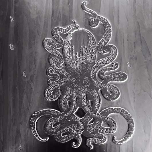 Octopus_swennjed_rotring_dessin_3